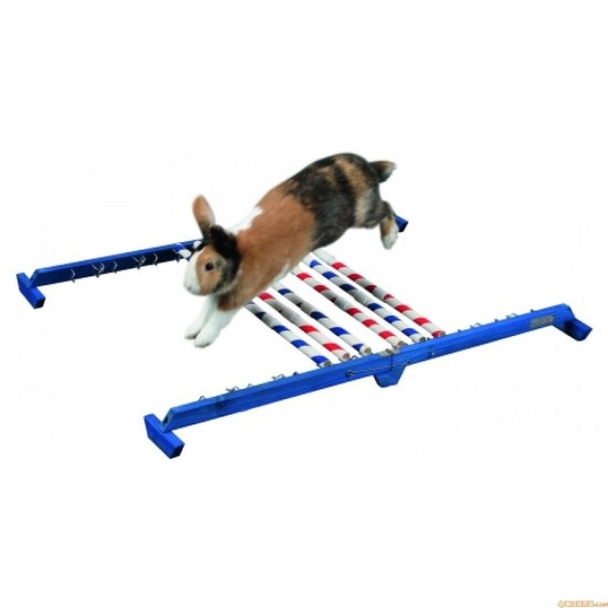 Rabbit Agility Combo Jump Height 53cm