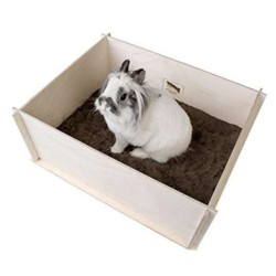Bunny Interactive Digging Box